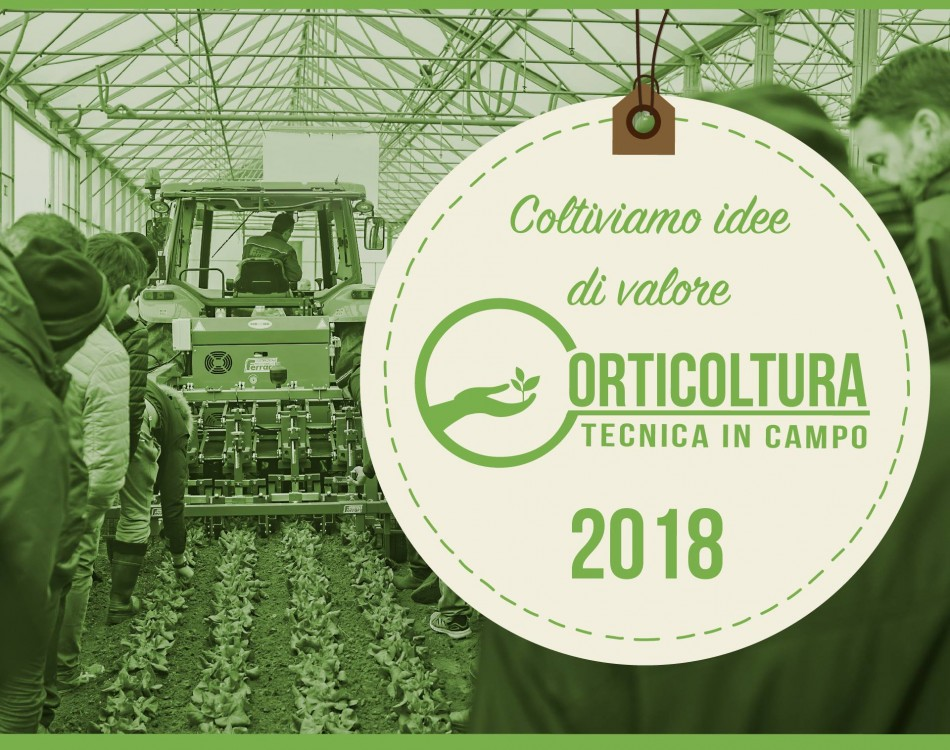 Orticoltura Tecnica in Campo Rijk Zwaan